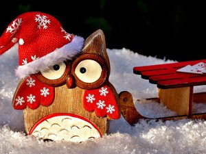 Hat, Wooden, sledge, owl, decoration, Nicholas, snow