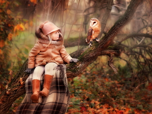 trees, coat, owl, Hat, girl, coverlet, Barn Owl