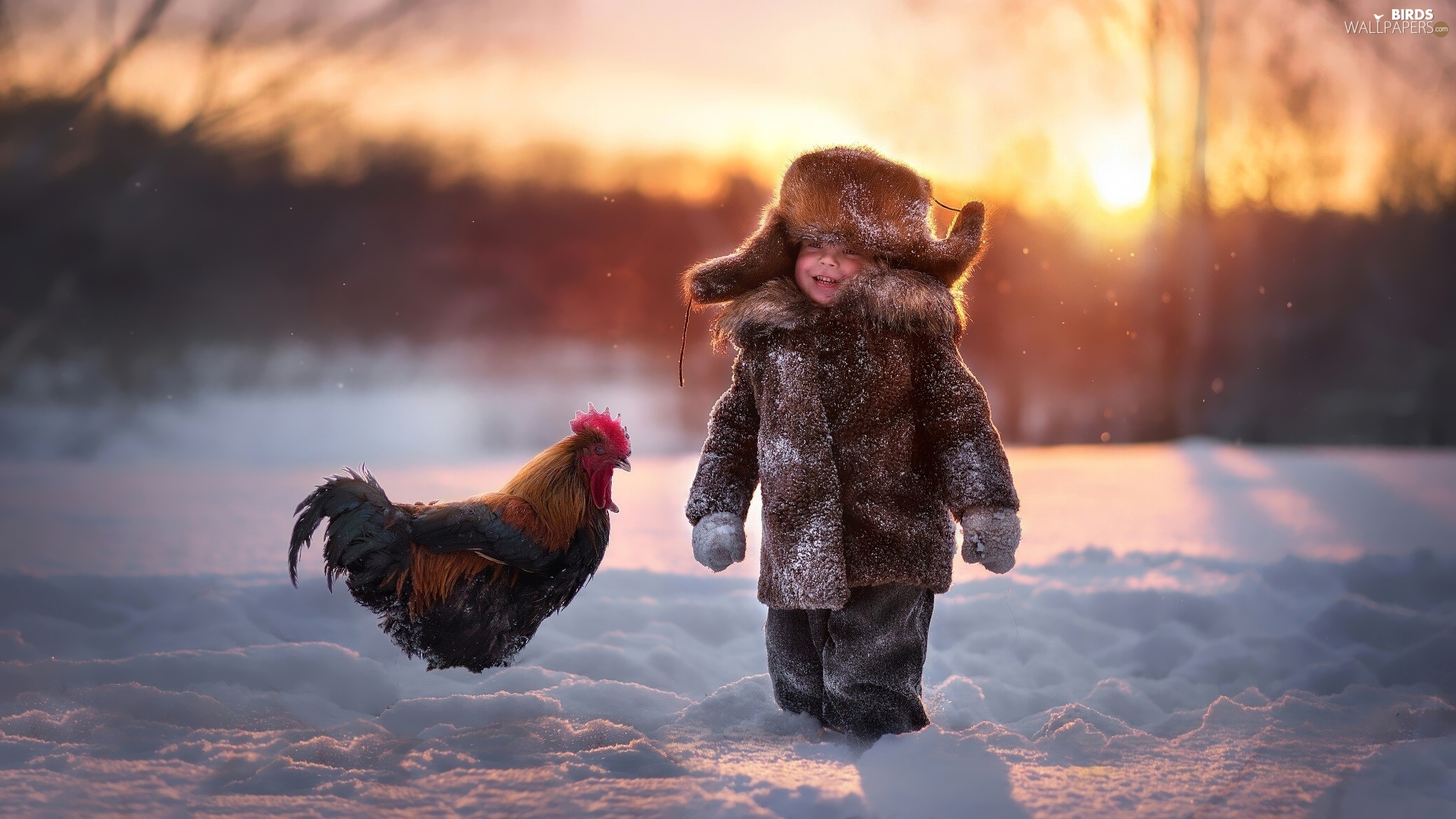 rooster, winter, boy, Kid, cheerful